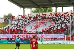 1. Spieltag Zwickau-Halle 18/19 2:0