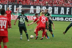 Hallescher-FC-VfL-Wolfsburg-10