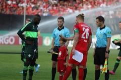 Hallescher-FC-VfL-Wolfsburg-16