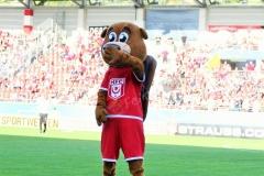 Hallescher-FC-VfL-Wolfsburg-4