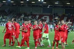 Hallescher-FC-VfL-Wolfsburg-7